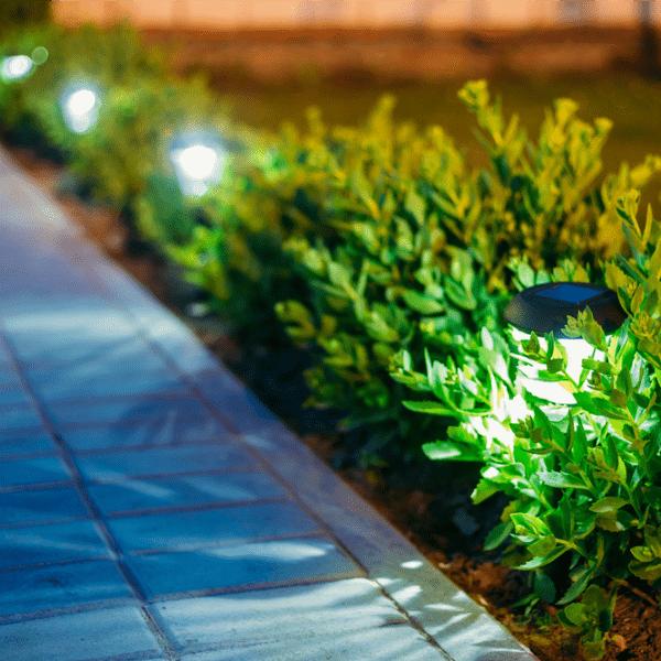 gardenlights